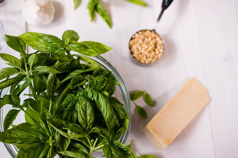 Pesto Sauce - Ingredients