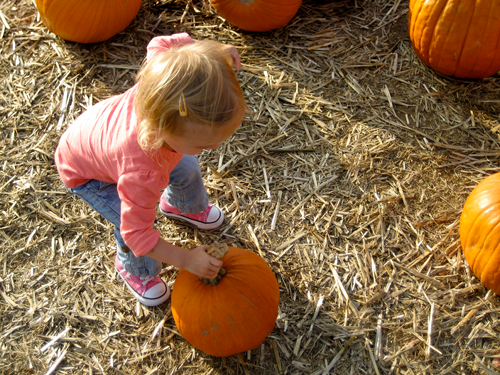 Jordan at the Pumpkin Patch 2010