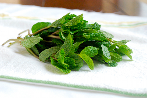 Sweet Tea with Mint recipe and images by Lacey Baier, a sweet pea chef
