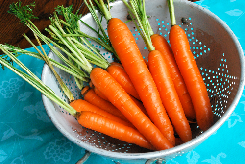Maple Ginger Glazed Carrots recipe and images by Lacey Baier, a sweet pea chef