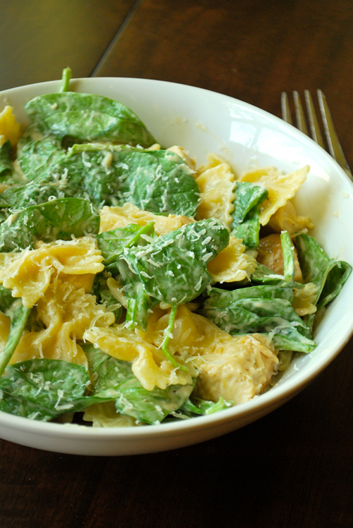 Chicken Florentine recipe and images by Lacey Baier, a sweet pea chef
