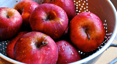 Freshly_Picked_Organic_Apples