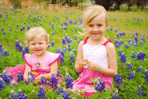 Oh, the Blue Bonnets!