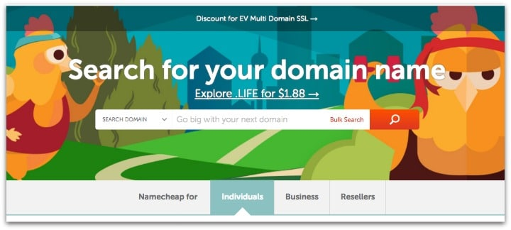 Name Cheap Domain Registration