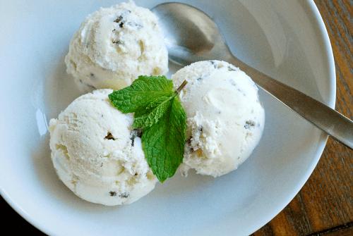 mint-chocolate-chip-ice-cream1