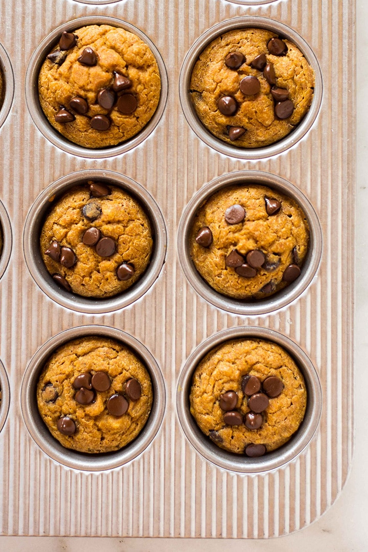 Close up of the baked pumpkin chocolate chip muffins, removed from the oven and ready to set out on a cooling rack.