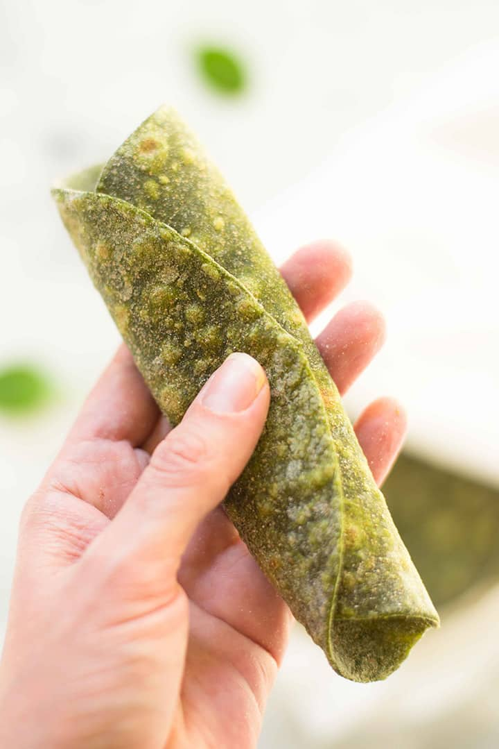 Hand holding rolled up spinach tortilla to show how soft and flexible the tortilla is.