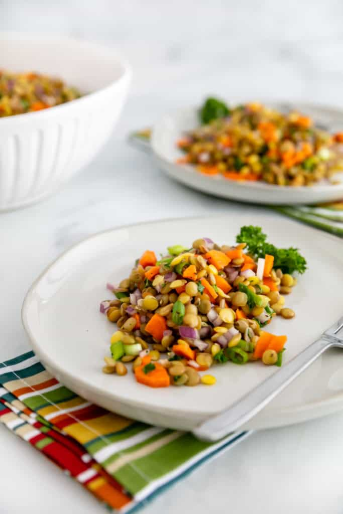 Looking to add a little protein to your day? This Cold Lentil Salad is refreshing, easy to make, and a great source of protein. Full of color and amazing taste, it's sure to satisfy!